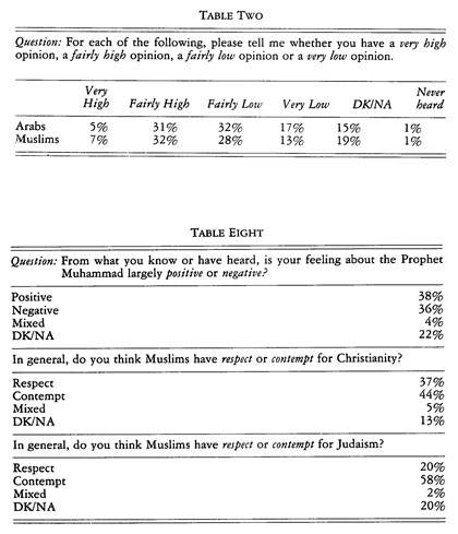 arab stereotypes stats table